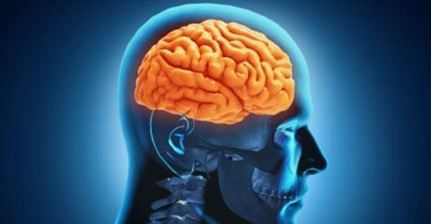 practice-areas-brain-injuries